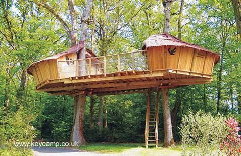 Casas del árbol mellizas sobre plataforma