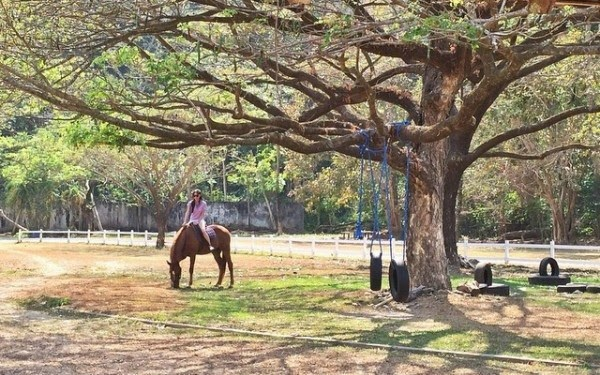 Spotted: Kim Chiu, doing a horseback ride