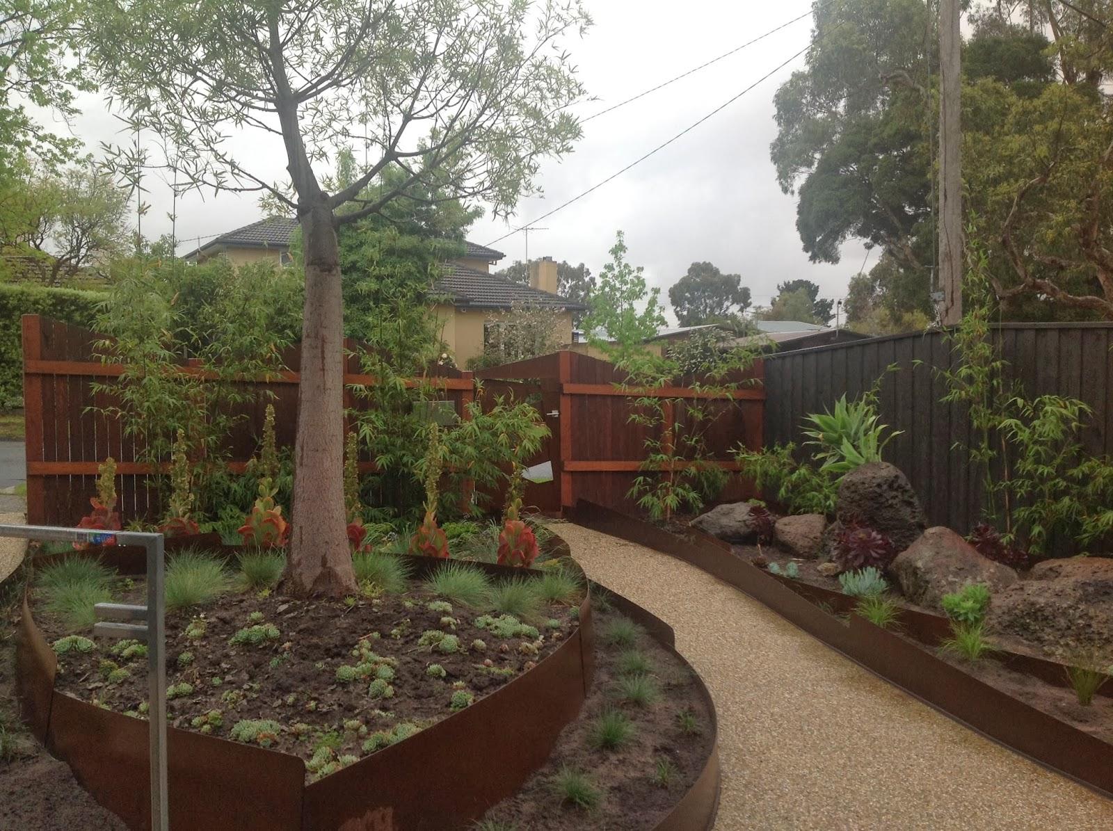 Bamboo Creations Victoria: Clients Garden in Ashburton Vic (Gracilis)
