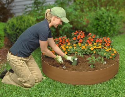 C mo cuidar las plantas en oto o verde jard n for Arreglar el jardin