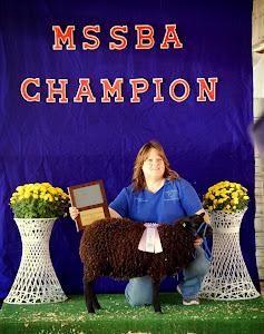 2012 Reserve Champion Ram