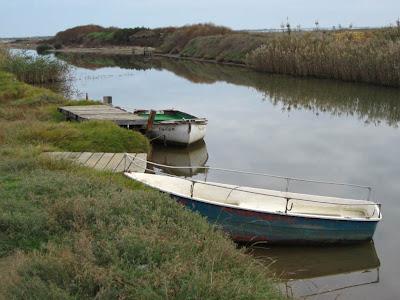 Port del Fangar in Delta de l'Ebre