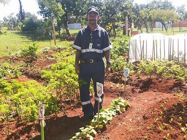 Jardineiro do terminal Adailton Sousa cuida diariamente das hortaliças