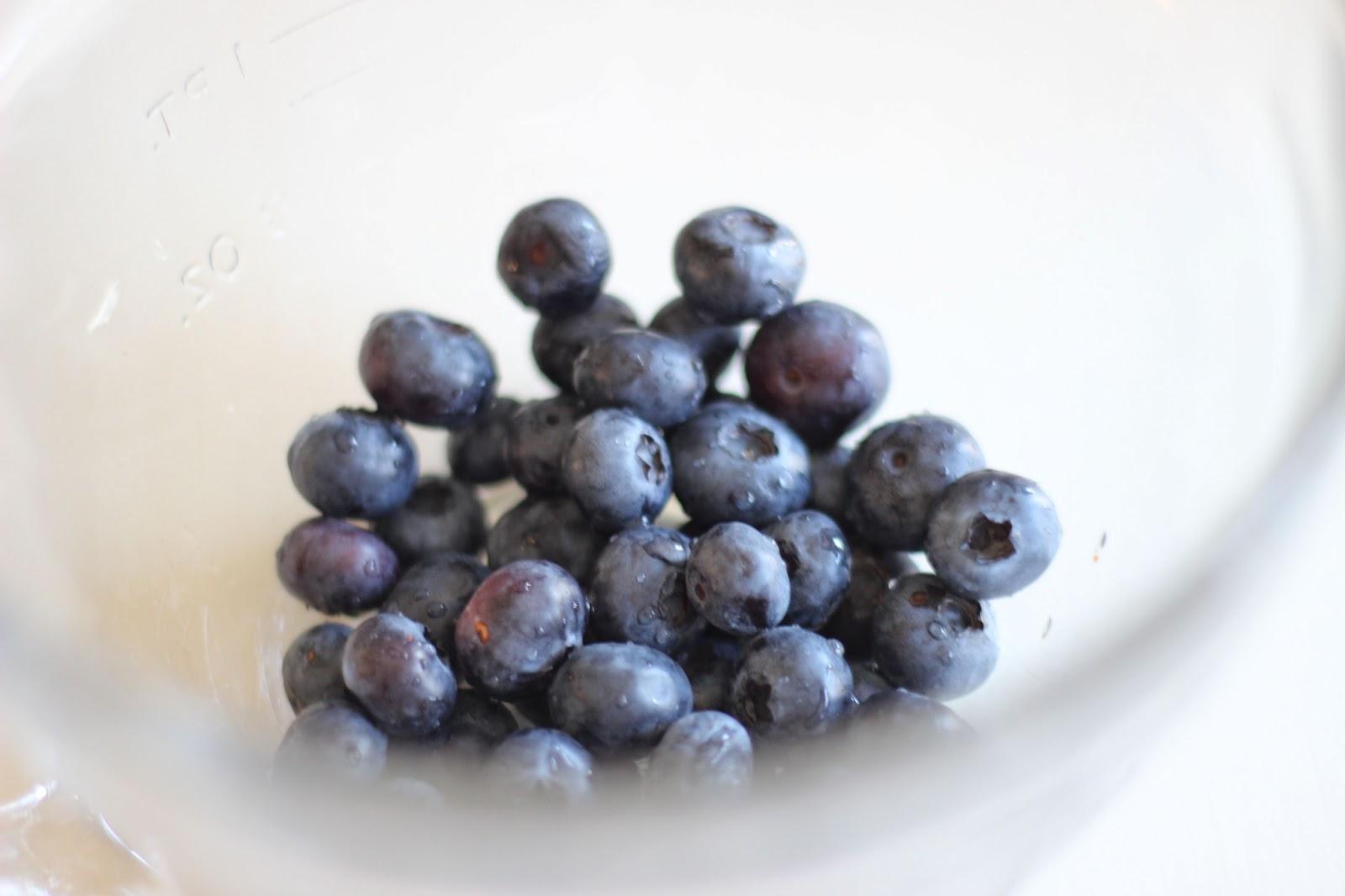 ... yogurt frozen yogurt blueberry frozen yogurt blueberry maple pecan