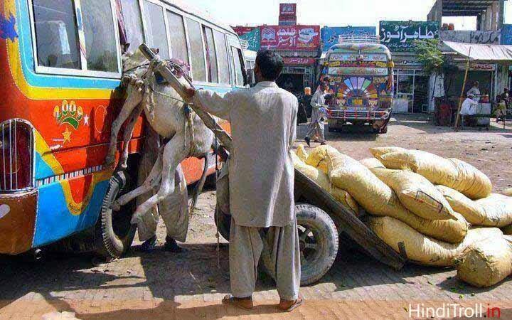 Funny donkey quotes hindi - photo#26