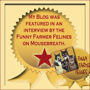 Our Mousebreath Interview