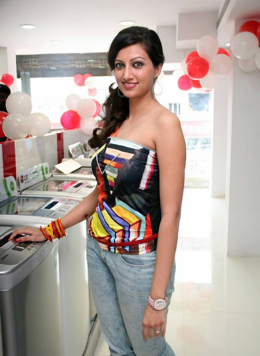 hamsa nandini spicy shoot hot photoshoot