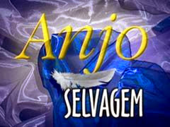 Maxi - Anjo Selvagem