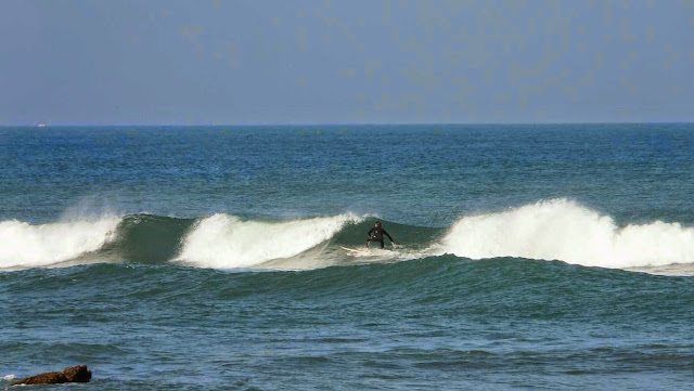 surfeando 01