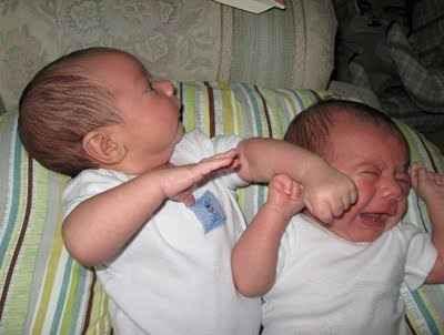 Foto Bayi-bayi yang Sedang Berantem ~ 1002 kliping beri