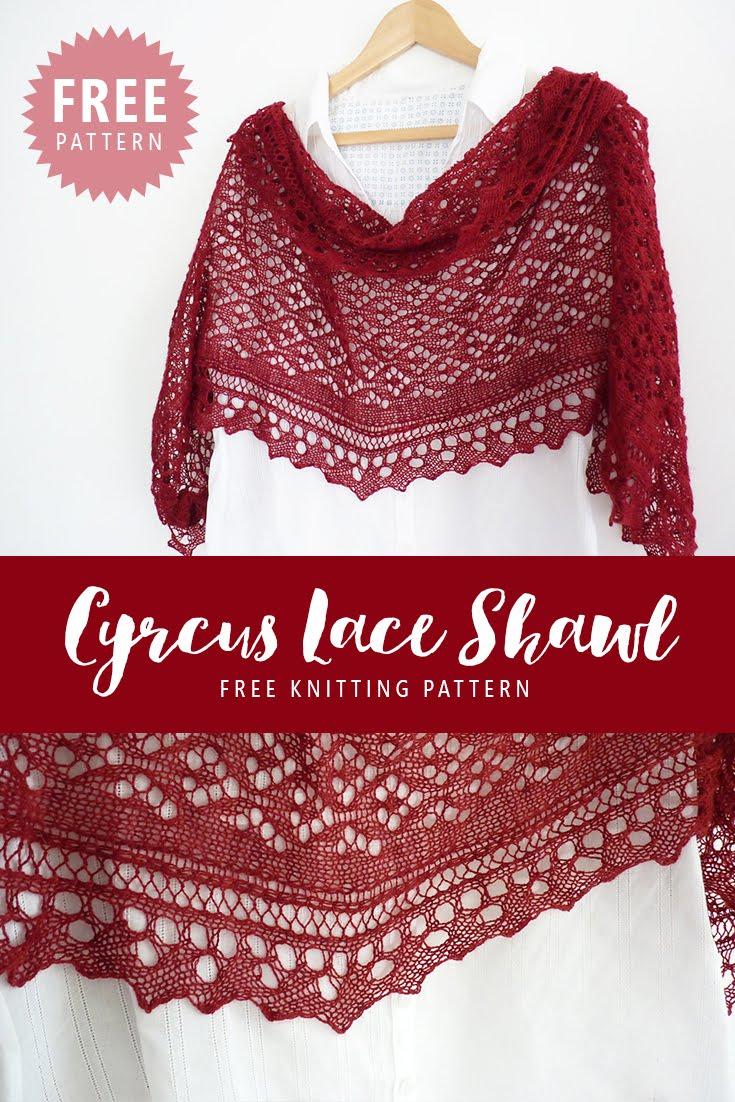Free Lace Knitting Patterns Shawls : Madeline s wardrobe free knitting pattern cyrcus lace shawl