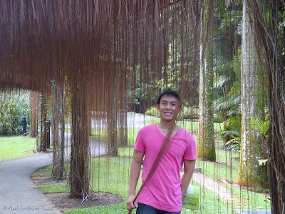 Singapore Botanic Gardens Photo 15