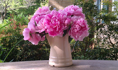IMAG0282 796134 Todays Gift 5/21/11: The Peonies I get to cut and bring indoors!
