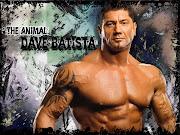 WWE Superstars, WWE Divas