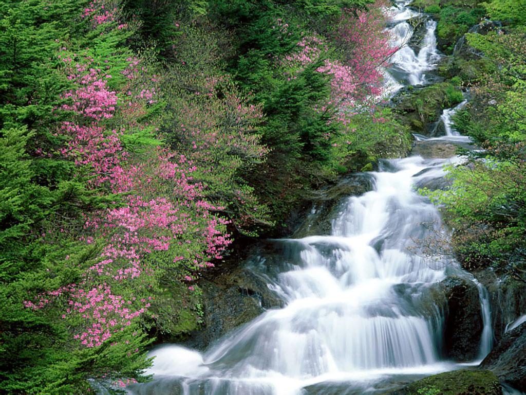 http://4.bp.blogspot.com/-4qwjDLlji1s/TZCXD9YQhYI/AAAAAAAAJq8/eyY2ibKTRek/s1600/2011paisagem.jpg
