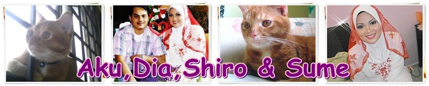 aku, dye,shiro & sume