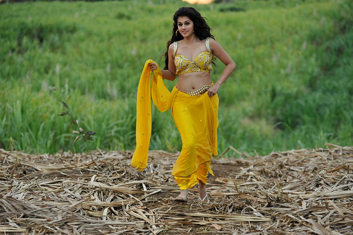 Mogudu Movie Actress Tapsee Spicy Navel Show Photos hot photos