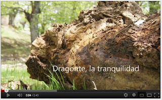 Dragonte, un paisaje precioso.