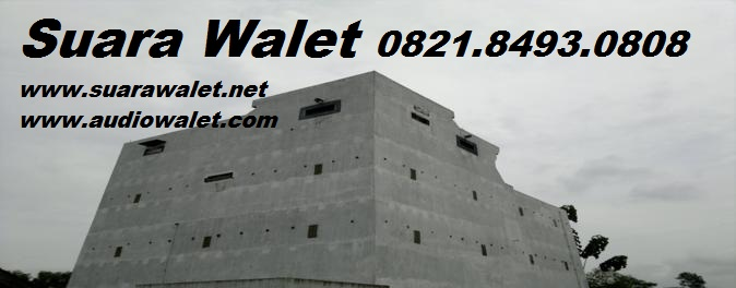 Audio Walet