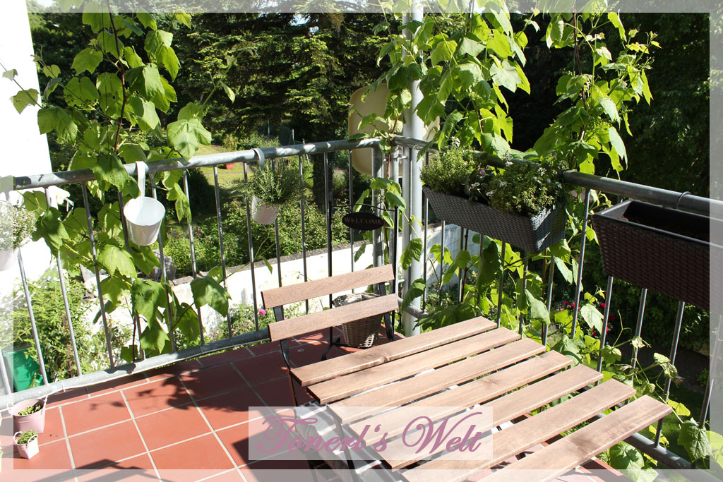 tonerl 39 s welt sommer auf dem balkon. Black Bedroom Furniture Sets. Home Design Ideas