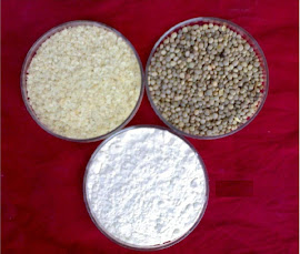 Guar- Seed, Split & Gum Powder