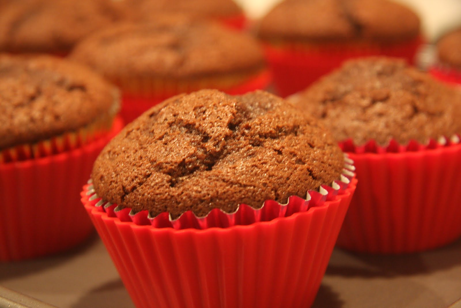 Survival of the yummiest espresso fudge cupcakes with for Chocolate fudge cream cheese frosting