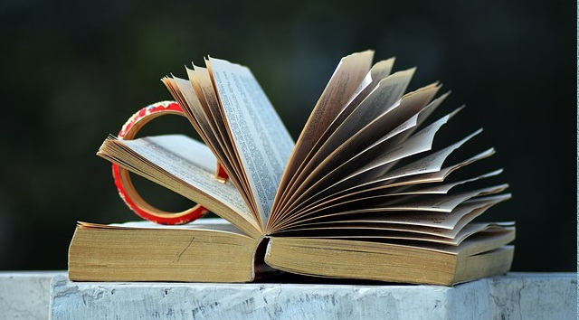 Pengertian Arti Literatur ( Definisi )