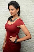 Pooja kumar new glam pics-thumbnail-4