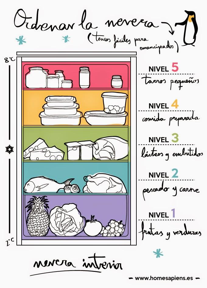 2013 reto organiza tu casa en 21 dias dia 6 labores for Como ordenar la nevera