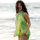 Bollywood Shehnaz Wet & Spicy Photos & Beach