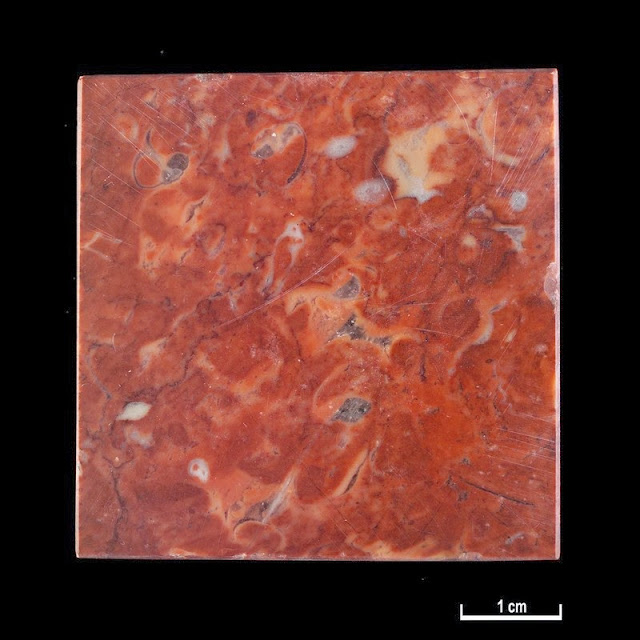 Marble specimen. Emperor Red, Portugal. Pedra Furada Quarries, Pero Pinheiro, Estremadura.  Emperor Red, Portugal. Alternative name: Encarnado. Specimen description: Red with pink/white markings and small fossil fragments.