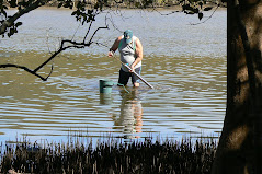 Pumping Yabbies for fishing