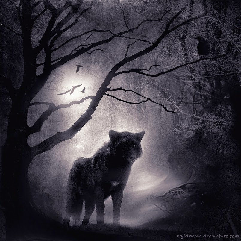 04-Wolfwood-wyldraven-Surreal-Night-Time-Photo-Manipulation-www-designstack-co