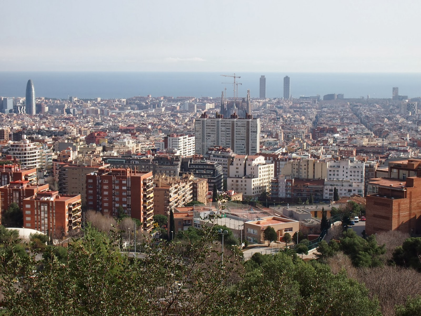 view from the top of park guell