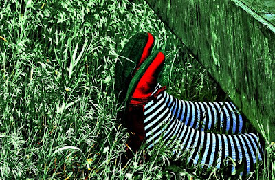 ruby slippers on legs with black and white striped stockings sticking out from under a house
