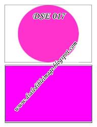 DSE 017