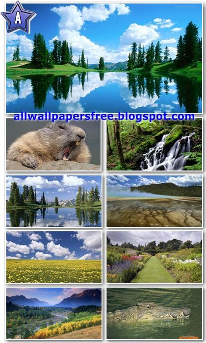 20 Amazing Nature Full HD Wallpapers 1080p [Set 7]