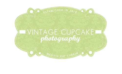 Vintage Cupcake