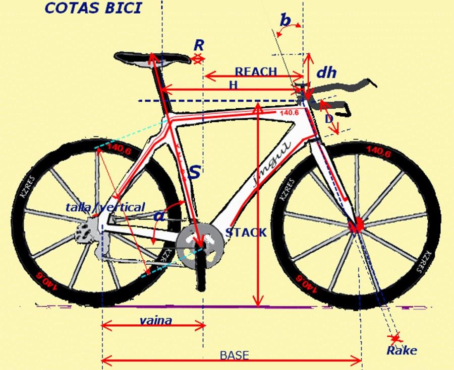 Perfecto Anatomía De Un Cuadro De La Bicicleta Regalo - Anatomía de ...