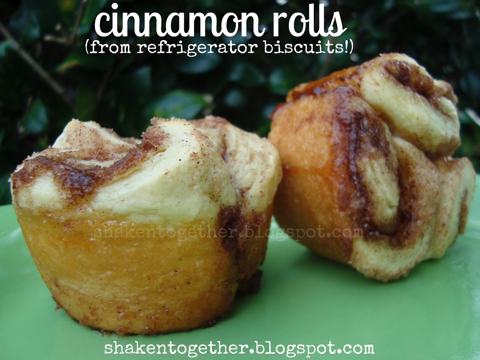 taste this} cinnamon rolls from refrigerator biscuits - Shaken ...