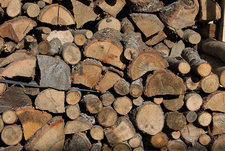 legno panicale buongiorno