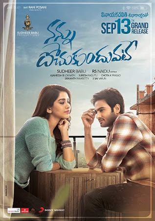 Poster Of Nannu Dochukunduvate In Dual Audio Hindi Telugu 300MB Compressed Small Size Pc Movie Free Download Only At worldfree4u.com