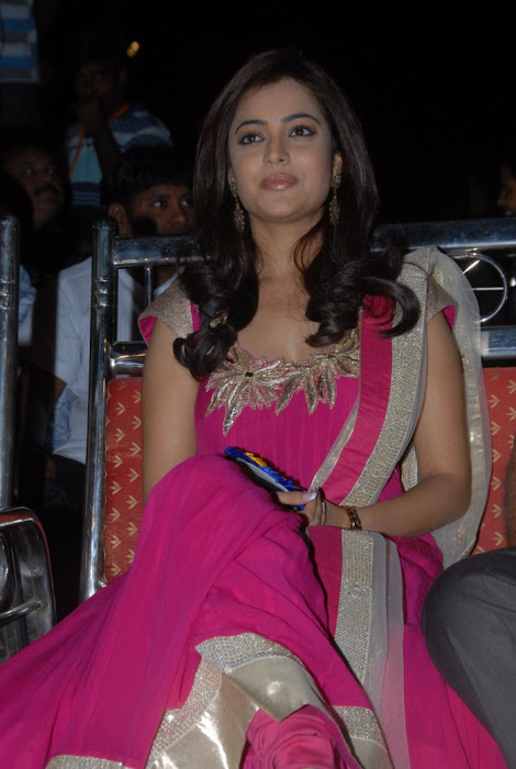 nisha agarwal at solo audio launch, nisha agarwal new
