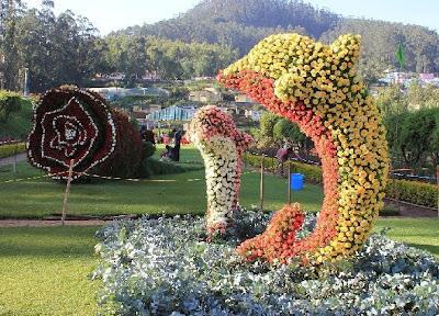 Ooty Flower Show Stills