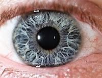 hareli göz, çok yakından mavi göz, iris