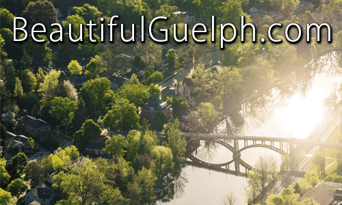 "Check out ""Beautiful Guelph""!"