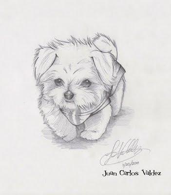 JC Valdezs Art And Animation Blog August 2011