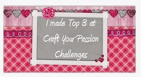 One of the top 3 picks @ Craft Your Passion Challenges