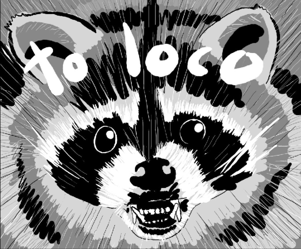 Mapache Toloco