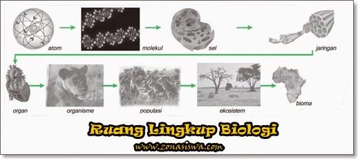 Ruang Lingkup Biologi | www.zonasiswa.com